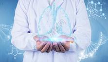 医生双手上的肺部图片
