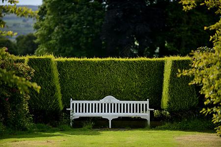 英格兰霍华德庄园内环境优雅的园林休闲图片