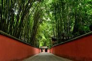 成都杜甫草堂内的红墙竹林图片