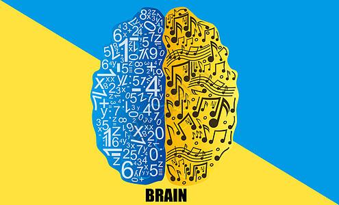 创意彩色大脑图片
