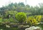三月扬州春色个园图片