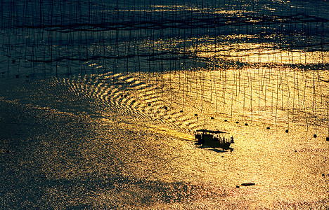 福建霞浦唯美意境的金色海面图片