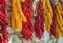 晒秋——玉米与辣椒图片