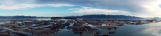 霞浦海上渔排风光图片