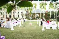 草坪婚礼布置图片