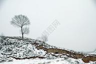 冬天风光 图片