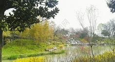 扬州廋西湖景色500703311图片