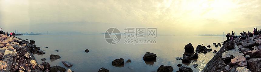 深圳湾沿岸图片