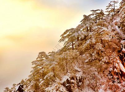 大美黄山冬天景色图片
