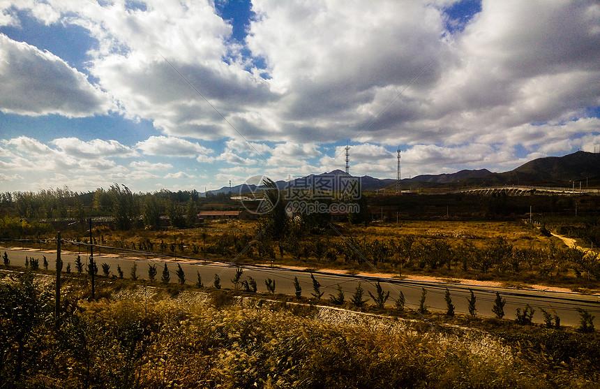 沿路的风景图片