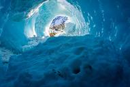 新西兰FOX冰川图片
