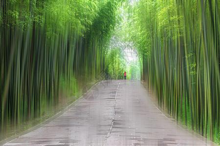 蜀南竹海翡翠长廊图片