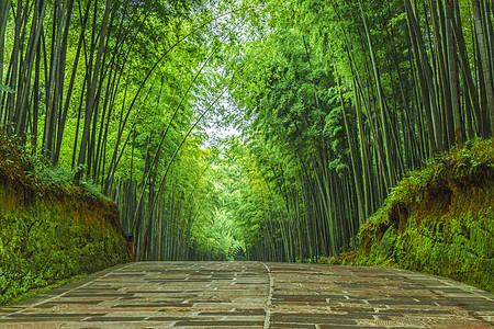幽静的蜀南竹海竹林石板路图片