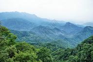 四川青城山图片