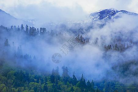 山云雾图片