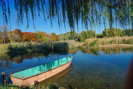 秋天的公园图片