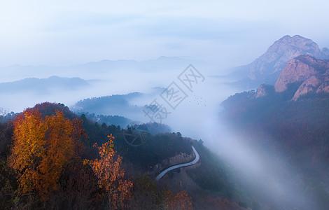山脉云海小路图片