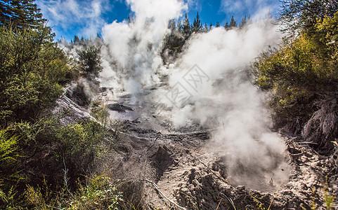 新西兰罗托鲁阿地热公园图片
