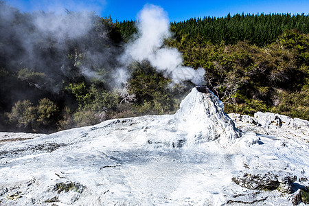 新西兰 罗托鲁阿地热公园图片