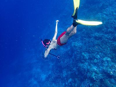 自由潜水海底摄影图片