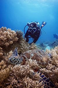 深潜的潜水员图片