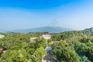 海南三亚亚龙湾热带雨林图片