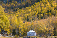 北疆的秋天图片