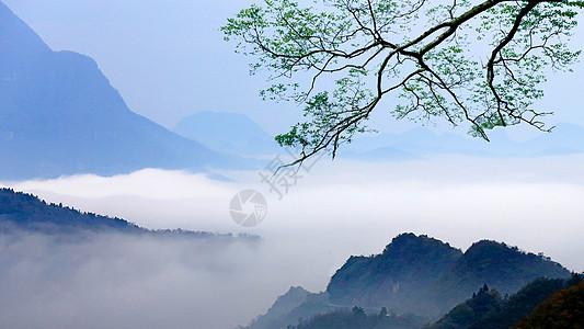 充满意境和水墨画般的光雾山风光图片