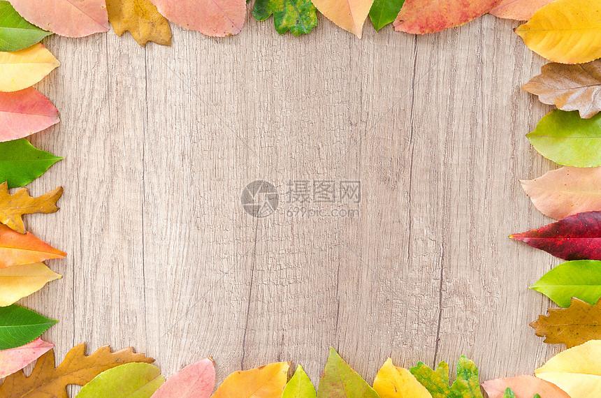木板上秋叶图片