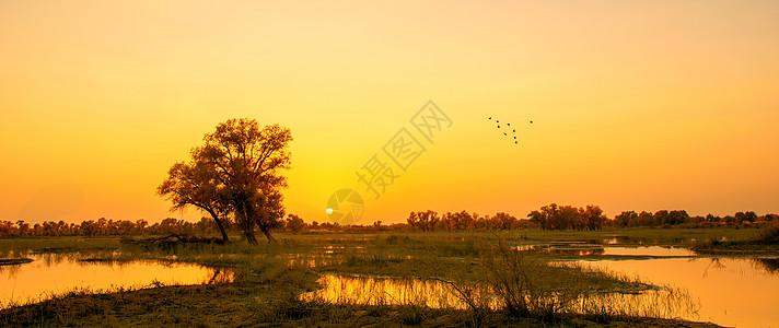 河滩落日图片