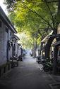 北京的胡同图片