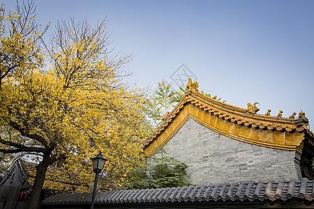 秋天的古建筑图片