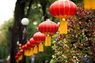 春节过年挂灯笼500713038图片
