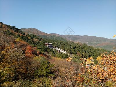 秋天的美景高清图片
