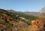 秋天的美景图片