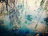 张公山寨的秋日图片