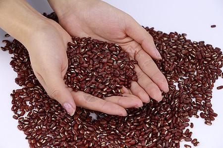 红豆赤小豆原料图图片