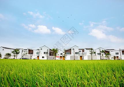 现代中式新农村建设图片