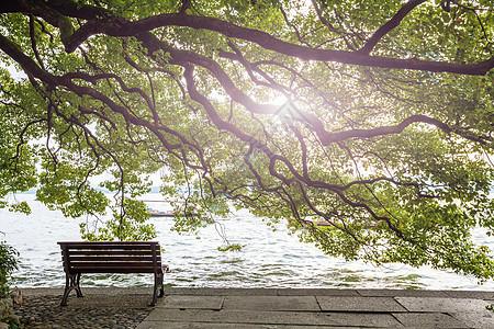西湖边图片