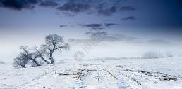大漠雪景图片
