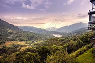 斯里兰卡高山茶园风光图片