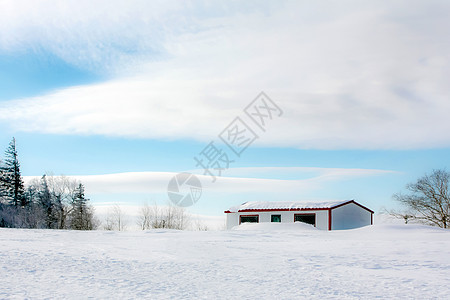 东北亚布力清晨的雪景图片