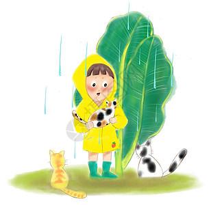 雨天捡只猫图片