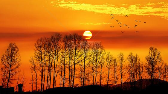 夕阳下的唯美黄昏剪影图片
