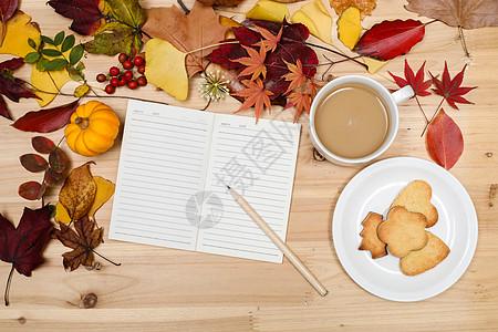 秋日落叶缤纷多彩的桌面图片