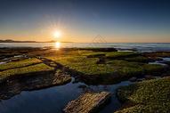 浅滩日落图片