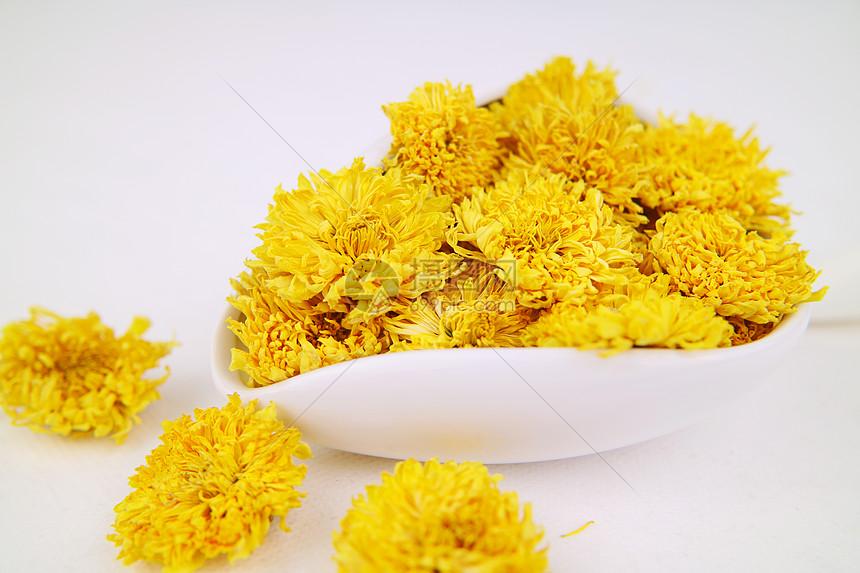 碗里的金丝皇菊 菊花茶图片