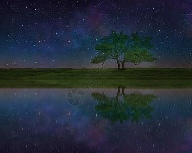 星空下的树和倒影图片