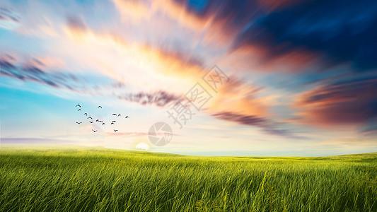 夕阳下的草原景色图片