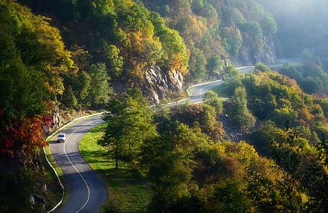 秋天云雾中的小路图片